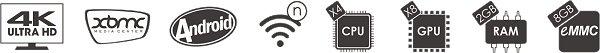 iconen minix neo x8